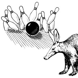 aardvark bowling