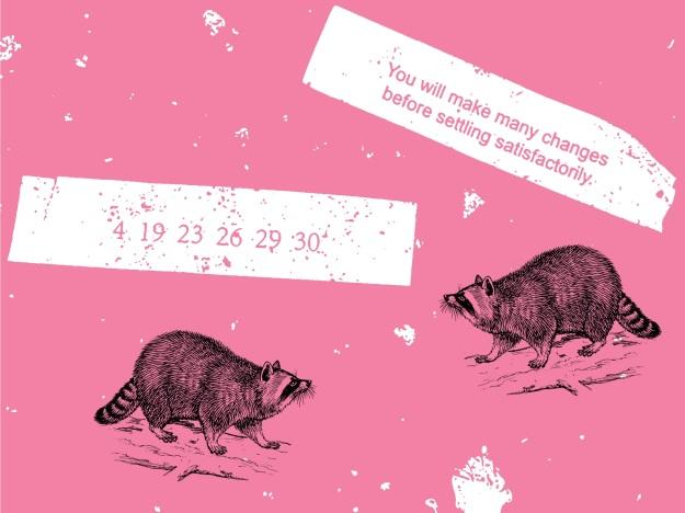 fortunes raccoons
